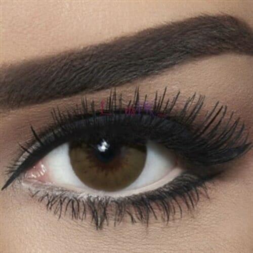 Buy Bella Brown Shadow Contact Lenses - Diamond Collection - lenspk.com