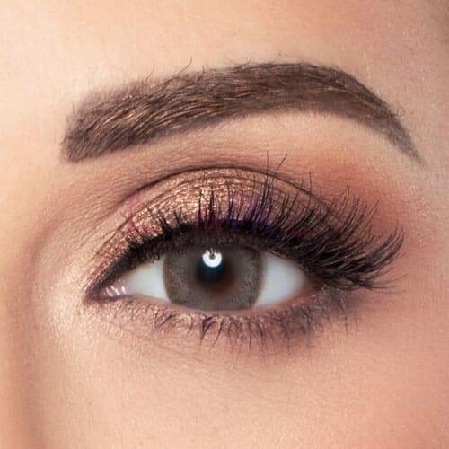 Amara Dark Sepia contact lenses